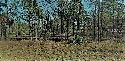 2003-106-014 NW 159TH/40TH, Ocala, FL 34481 (MLS #T3103453) :: The Lockhart Team