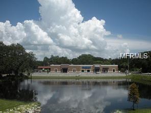 31201 Us Highway 19 N #2, Palm Harbor, FL 34684 (MLS #T3103454) :: The Lockhart Team
