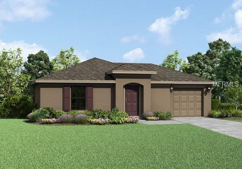 27017 Anthony Avenue, Brooksville, FL 34602 (MLS #T3103657) :: Team Pepka