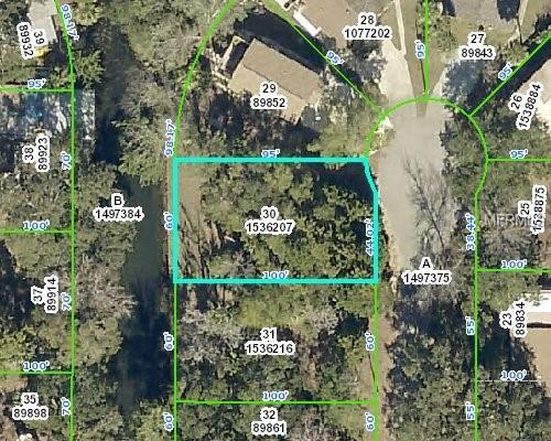 8175 Anchor Point Drive, Weeki Wachee, FL 34607 (MLS #T3105386) :: The Duncan Duo Team