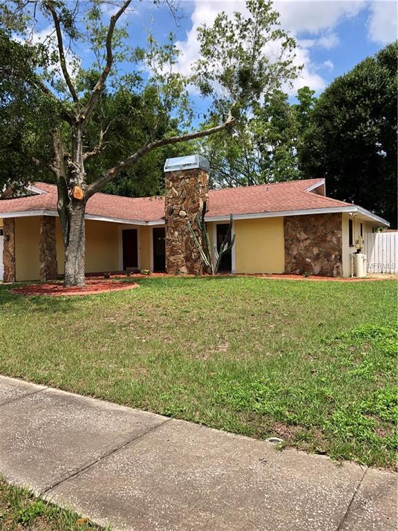 5503 Blue Jay, Tampa, FL 33625 (MLS #T3108338) :: O'Connor Homes