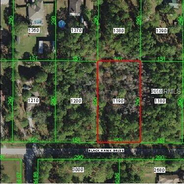 Lot 119 Blackhawk, Wesley Chapel, FL 33544 (MLS #T3108813) :: Mark and Joni Coulter | Better Homes and Gardens