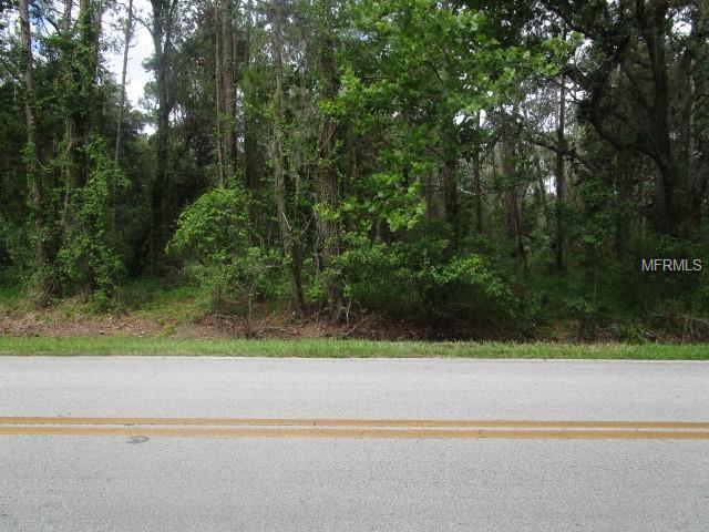1940 S Creekwood Run E, Lakeland, FL 33809 (MLS #T3112481) :: The Lockhart Team