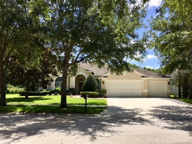 15934 Sorawater Drive, Lithia, FL 33547 (MLS #T3113691) :: The Duncan Duo Team