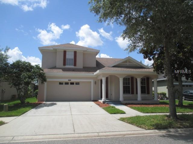 8456 Lagerfeld Drive, Land O Lakes, FL 34637 (MLS #T3113823) :: Griffin Group