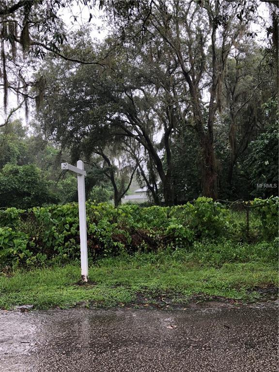 9308 Eastfield Road, Thonotosassa, FL 33592 (MLS #T3116245) :: The Lockhart Team