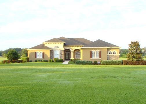 18423 Lithia Towne Road, Lithia, FL 33547 (MLS #T3118218) :: Dalton Wade Real Estate Group