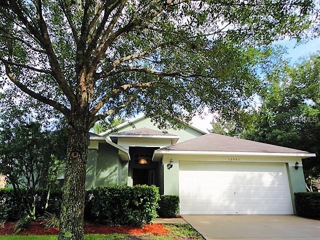 18951 Wood Sage Drive, Tampa, FL 33647 (MLS #T3118932) :: Team Bohannon Keller Williams, Tampa Properties
