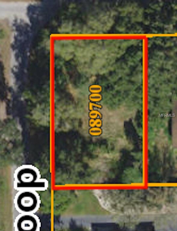 3810 Wilder Loop, Plant City, FL 33565 (MLS #T3122878) :: The Duncan Duo Team