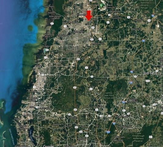 Cobra Street, Spring Hill, FL 34609 (MLS #T3123371) :: Griffin Group