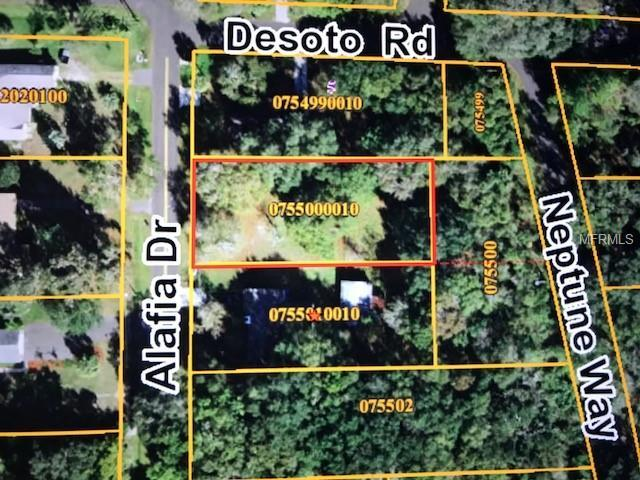 Alafia Drive, Riverview, FL 33578 (MLS #T3123905) :: The Duncan Duo Team