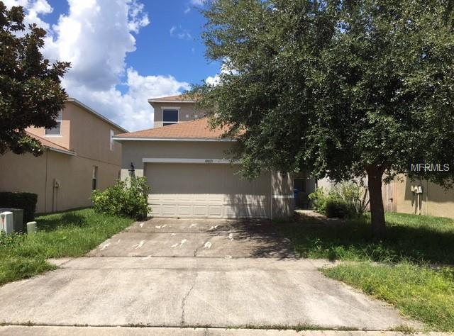 18813 Litzau Lane, Land O Lakes, FL 34638 (MLS #T3125692) :: Griffin Group