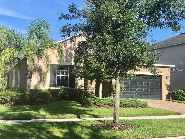 19338 Paddock View Drive, Tampa, FL 33647 (MLS #T3125723) :: Godwin Realty Group