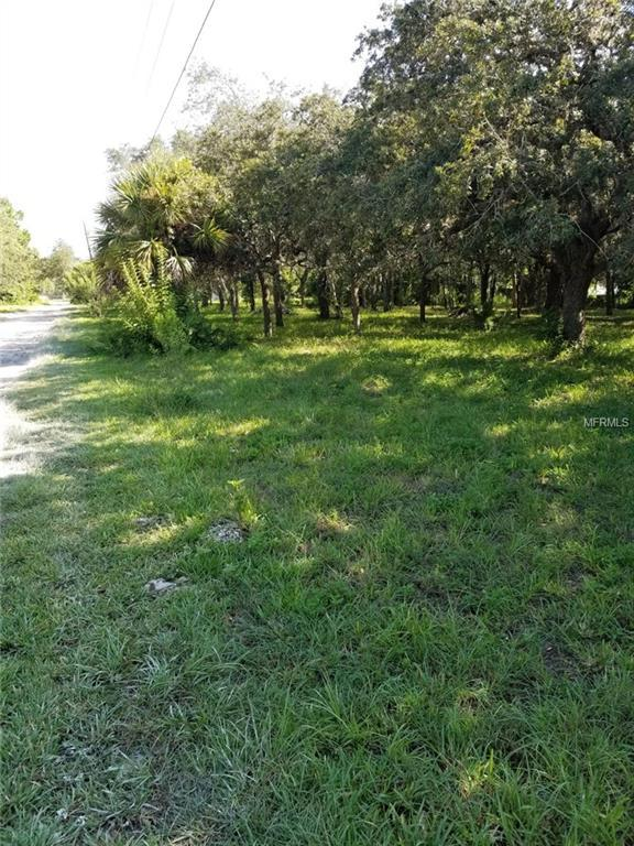 Becky Lane, Hudson, FL 34667 (MLS #T3125806) :: Griffin Group
