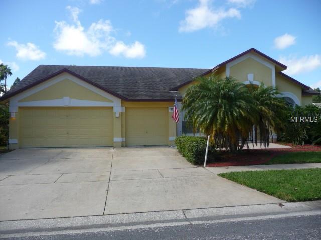 18534 Avocet Drive, Lutz, FL 33558 (MLS #T3126029) :: CENTURY 21 OneBlue