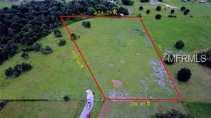 Hackemore Road, Zephyrhills, FL 33541 (MLS #T3128580) :: The Duncan Duo Team