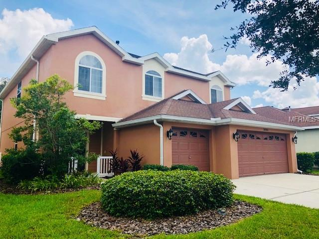 20505 Sultana Court, Tampa, FL 33647 (MLS #T3130230) :: Cartwright Realty