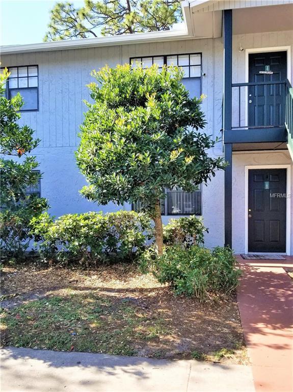 203 Pine Tulip Court #102, Tampa, FL 33612 (MLS #T3130801) :: Team Bohannon Keller Williams, Tampa Properties