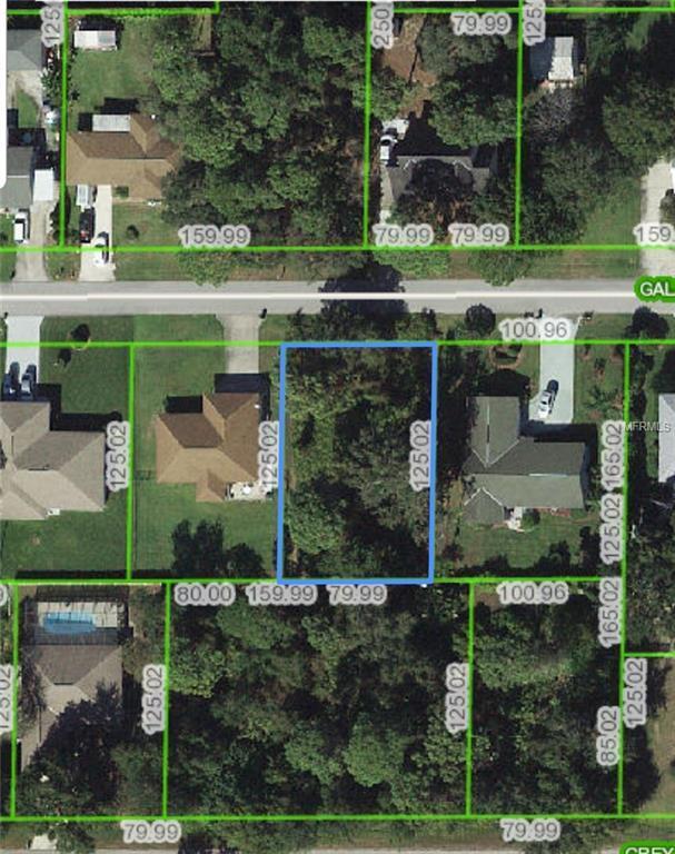 907 Galaxy Avenue, Sebring, FL 33875 (MLS #T3131222) :: Griffin Group