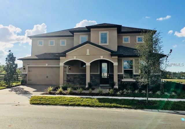 2784 Murray Pass, Odessa, FL 33556 (MLS #T3131252) :: Griffin Group