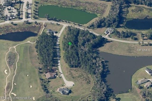 19535 Autumn Oak Lane, Brooksville, FL 34601 (MLS #T3133292) :: The Duncan Duo Team