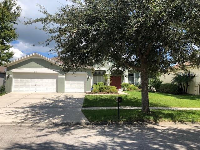 16156 Bridgepark Drive, Lithia, FL 33547 (MLS #T3133755) :: Medway Realty