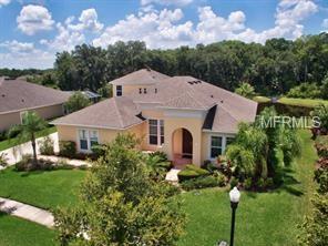 3337 Watermark Drive, Wesley Chapel, FL 33544 (MLS #T3134486) :: Team Bohannon Keller Williams, Tampa Properties