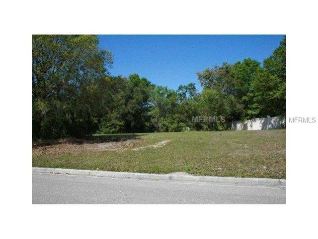 Address Not Published, Lutz, FL 33548 (MLS #T3135033) :: The Duncan Duo Team