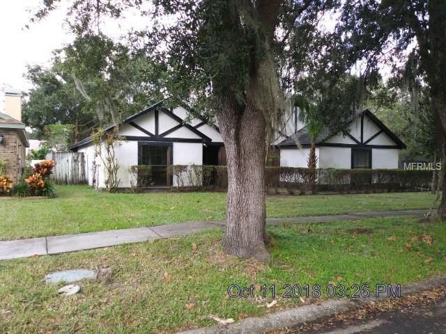3811 Cold Creek Drive, Valrico, FL 33596 (MLS #T3136340) :: Dalton Wade Real Estate Group