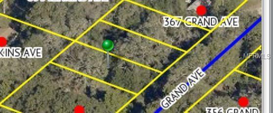 355 Grand Avenue, Brooksville, FL 34604 (MLS #T3137632) :: The Duncan Duo Team