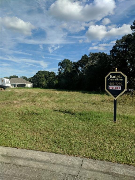 10928 Brooksnest Court, Lithia, FL 33547 (MLS #T3138255) :: The Duncan Duo Team