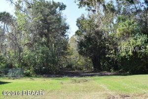 23 Timber Trail, Holly Hill, FL 32117 (MLS #T3138657) :: Mark and Joni Coulter | Better Homes and Gardens