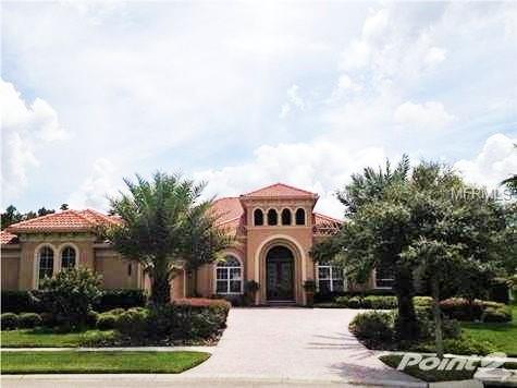 20010 Ryman Place, Tampa, FL 33647 (MLS #T3139816) :: Team Bohannon Keller Williams, Tampa Properties