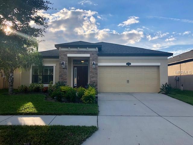 11412 Blue Crane Street, Riverview, FL 33569 (MLS #T3141664) :: Lovitch Realty Group, LLC
