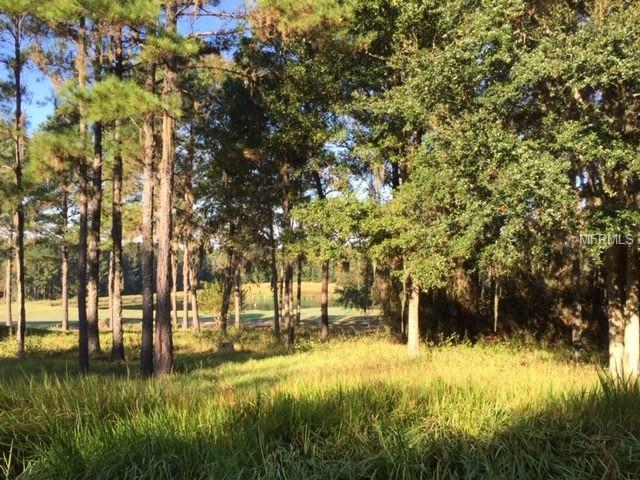 5033 Majestic Hills Loop, Brooksville, FL 34601 (MLS #T3141982) :: Griffin Group