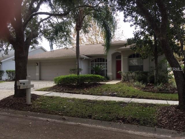 17710 Hampshire Oak Drive, Tampa, FL 33647 (MLS #T3144824) :: Andrew Cherry & Company