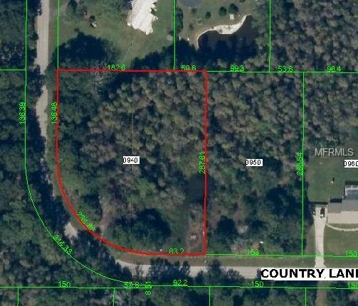 1260 Country Lane, Lutz, FL 33548 (MLS #T3145111) :: The Duncan Duo Team