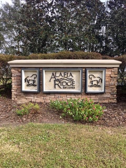 102 Alafia Estates Lane, Plant City, FL 33567 (MLS #T3147952) :: The Duncan Duo Team