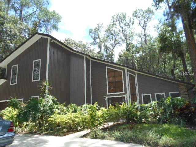 1511 Holleman Drive, Valrico, FL 33596 (MLS #T3149662) :: Griffin Group