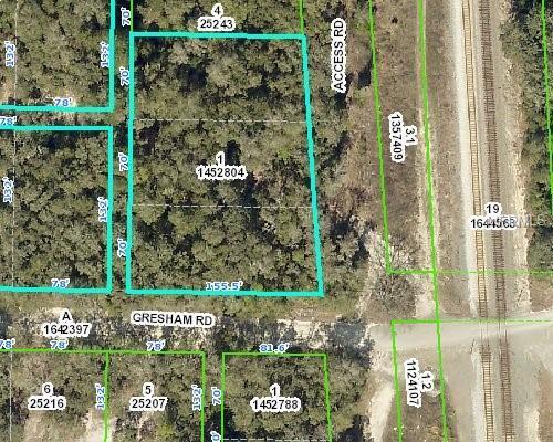 Treiman Boulevard, Webster, FL 33597 (MLS #T3150162) :: Griffin Group