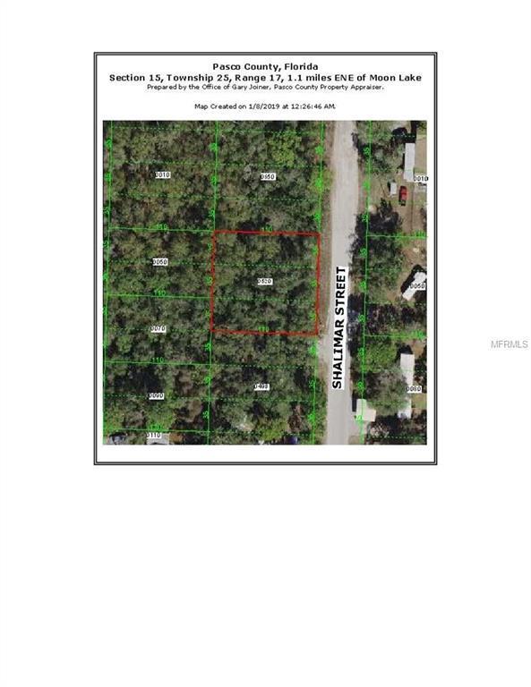 10120 Shalimar Street, New Port Richey, FL 34655 (MLS #T3150328) :: The Duncan Duo Team