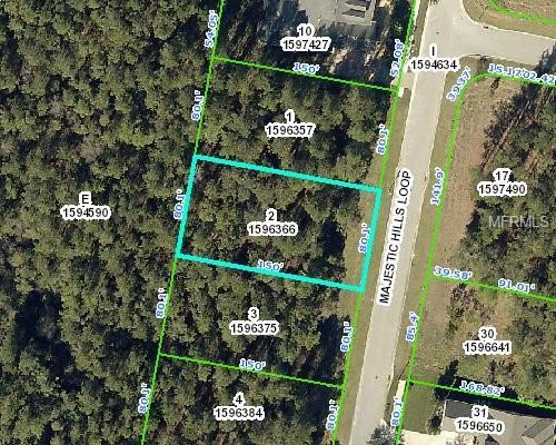 4893 Majestic Hills Loop, Brooksville, FL 34601 (MLS #T3150434) :: Griffin Group