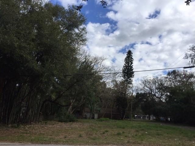 6401 N 47TH Street, Tampa, FL 33610 (MLS #T3150853) :: Homepride Realty Services
