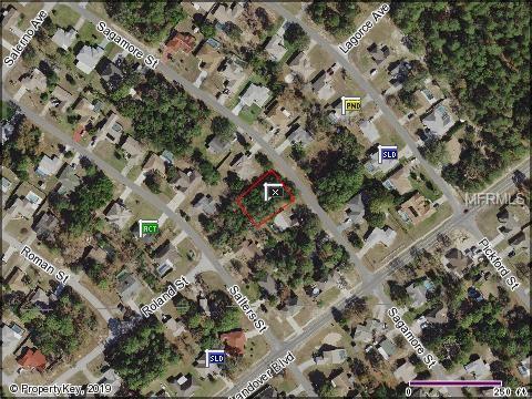 11352 Sagamore Street, Spring Hill, FL 34609 (MLS #T3151712) :: Remax Alliance