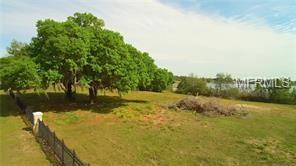2615 Hickory Tree Road, Saint Cloud, FL 34772 (MLS #T3152825) :: Griffin Group