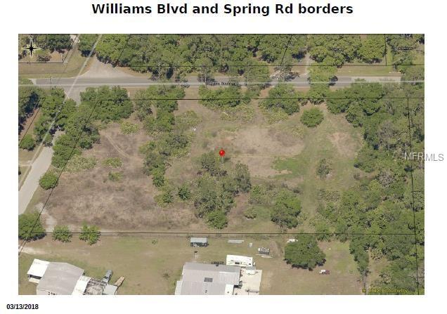 Spring & Williams Bv Road, Valrico, FL 33596 (MLS #T3154840) :: RE/MAX Realtec Group