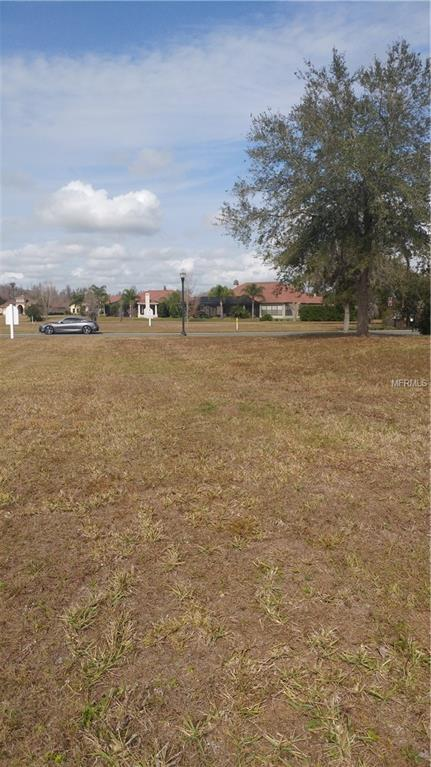 20454 Lace Cascade Road, Land O Lakes, FL 34637 (MLS #T3155076) :: Cartwright Realty
