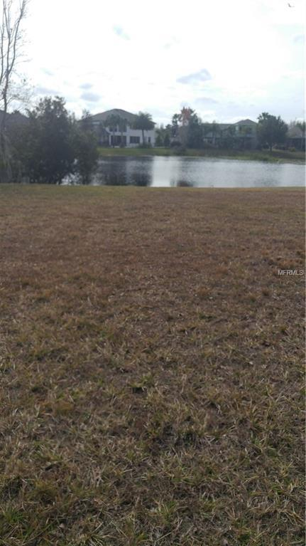 8750 Bonica Place, Land O Lakes, FL 34637 (MLS #T3155119) :: The Duncan Duo Team