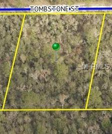 33476 Tombstone Street, Webster, FL 33597 (MLS #T3158174) :: Griffin Group