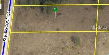 9044 Split Stone Drive, Webster, FL 33597 (MLS #T3158187) :: Griffin Group